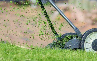 Das Vertikutieren eines Rasens